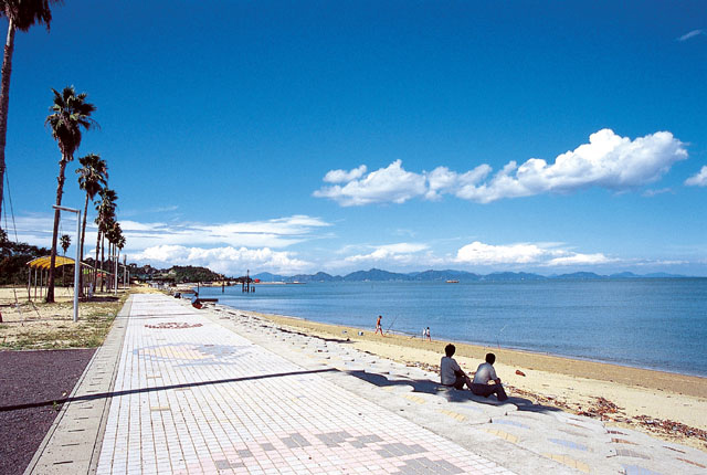 唐子浜・桜井海岸